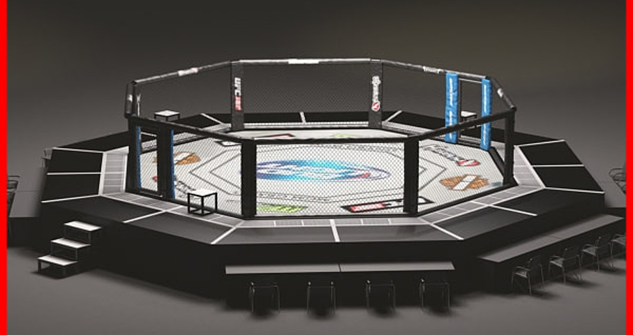 UFC Fighting Ring